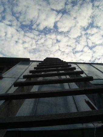 Жизнь подобна лестнице. Человек живет до тех пор, пока продолжает карабкаться вверх