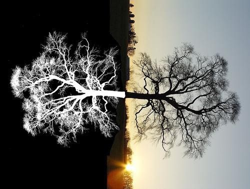 В жизни возможны только две трагедии: первая - получить то, о чем мечтаешь, вторая - не получить