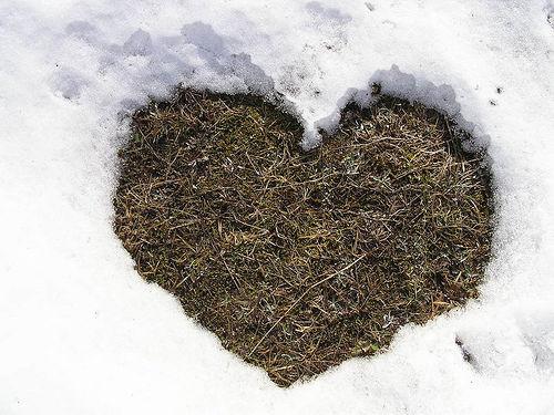 Счастье в любви можно найти только если вы принесете его с собой